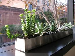 indoor windowsill planter indoor window box planter impressive best 20 indoor window boxes