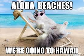 Hawaii Meme - aloha beaches we re going to hawaii hola beaches meme generator