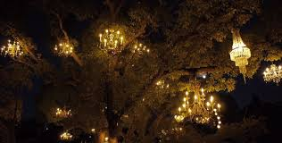 The Chandelier The Chandelier Tree Is One Of L A S Most Gorgeous Nighttime Gems
