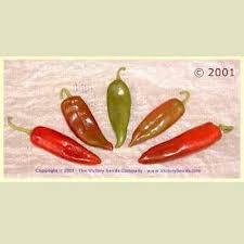 44 best vegetable garden seeds to buy images on pinterest