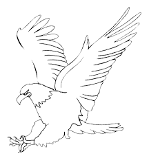 bird coloring page eagle hunting meat animal coloring pages of