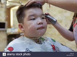7 year old boy hair a 7 year old mixed race boy getting a hair cut stock photo