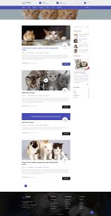the cat psd template for pet shop and care organisations by