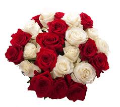types of red colors images of red and white home rose bouquet red and white red