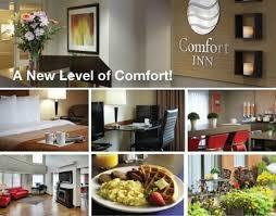 Comforter Inn Comfort Inn Now 88 Was 9 9 Updated 2017 Prices U0026 Hotel