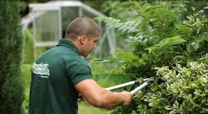 Interior Garden Services Gardeners Abwfct Com