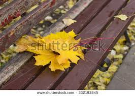 autumn urban painting part wooden benches stock photo 681956293