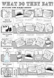 english teaching worksheets the animals