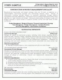 It Specialist Resume Examples Telecommunication Specialist Resume Resume Manjula Devi R