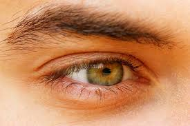 What Causes Blindness In Humans Hazel Eyes What Determines Hazel Eye Color