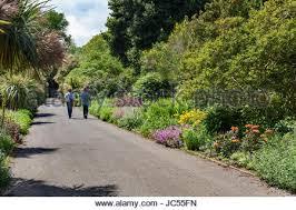 Ventnor Botanic Gardens Ventnor Botanic Garden Isle Of Wight Stock Photo 77697200 Alamy