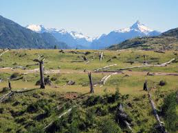 Flag Pole Hill Photo Gallery For Carretera Austral