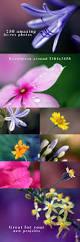 30 best forever floral images on pinterest flower arrangements