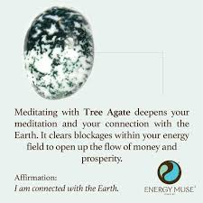 tree agate discover the tree agate meaning from energy muse