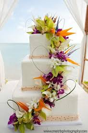 tropical themed wedding wedding theme tropical wedding cake 2490406 weddbook