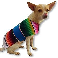chihuahua sweaters chihuahua clothes amazon com