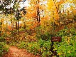 Autumn Colors The Best Things To Do In Door County In The Fall