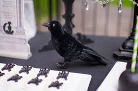 small halloween party planning a spooktacular halloween party in 5 easy steps hoopla