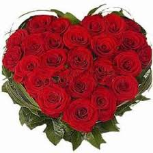 send roses best 25 send roses ideas on color meanings send