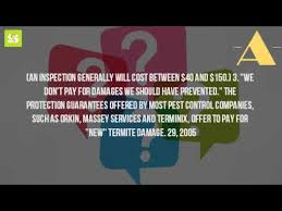 how much does it cost for orkin pest
