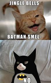 Grumpy Cat Meme Images - grumpy batman cat grumpy cat know your meme