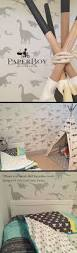 Bedroom Ideas Teenage Guys Small Rooms Tween Boy Bedroom Ideas On A Budget Little Cool Baby Pictures