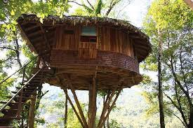 famous tree houses 6 amazing tree house resorts of india that look absolutely magical
