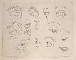 file designs of ears and engraving after c le brun wellcome
