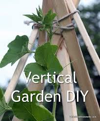 How To Build A Vertical Garden - 53 best diy garden u0026 ideas images on pinterest plants gardening