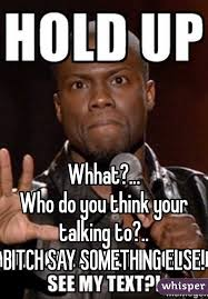 Who You Talking To Meme - who do you think your talking to bitch say something else