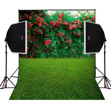 wedding backdrop grass aliexpress buy grass lawn roses blossoms background for