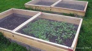Raised Garden Beds How To - how to make squirrel screens for raised garden beds garden