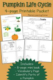 pumpkin life cycle worksheets mamas learning corner
