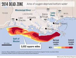 louisiana state map key gulf s low oxygen dead zone covers 5 052 square along