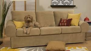 best sofa fabric for dogs best sofa fabric for dog owners www resnooze com