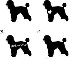 poodle decal etsy