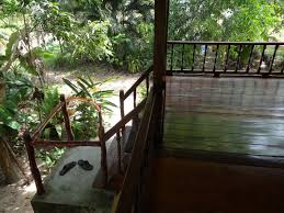 How Much Do Banisters Cost How Much Does It Cost To Live In Paradise Koh Phangan Thailand