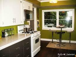 Black Painted Kitchen Cabinets Dark Green Painted Kitchen Cabinets