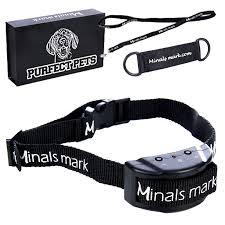 How To Train Dog To Stop Barking Amazon Com Stop Barking Dog Collar Training Collar To Enable Dog