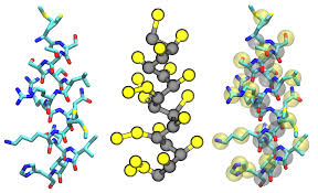 polymers free full text coarse grained models for protein cell