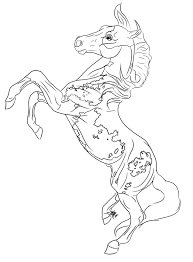 rearing paint horse lines by printed shadows on deviantart