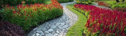 Grass Roots Landscaping by California Roots Landscaping And Design Paso Robles Ca Us 93446