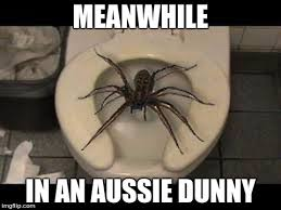 Meme Generatos - spider toilet meme generator imgflip also charming interior color
