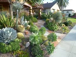Cactus Garden Ideas Landscaping Trends The New Normal For Many Property Owners