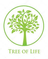 tree symbol symbol of the tree of life stock vector olgasuslo 75900573