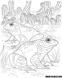 frog toad coloring pages kids coloring free kids coloring