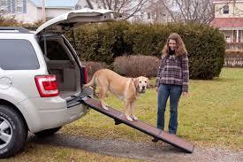 honest john lexus rx 400h 10 useful car accessories for dog owners honest john