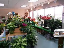 florist in greensboro nc about clemmons florist inc greensboro florist