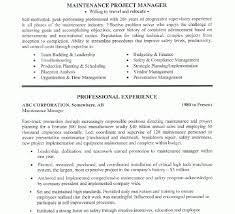 resume for manager position haadyaooverbayresort com