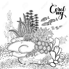 coral coloring pages eliolera com
